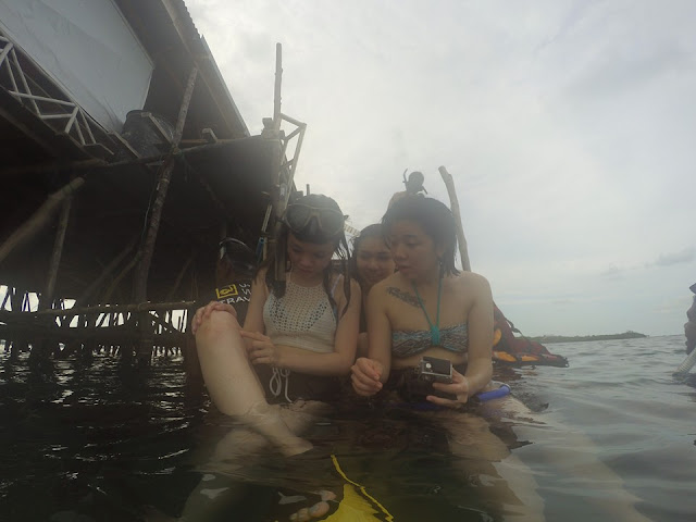 One Day Bintan Snorkeling Package