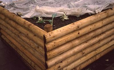 Hochbeet - erst Pflanzung mit Vlies