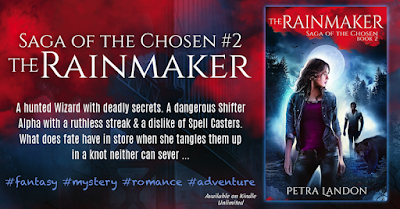 Excerpt: The Rainmaker by Petra Landon
