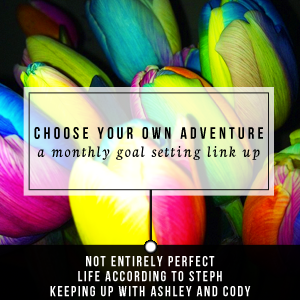 Choose Your Own Adventure: A Monthly Goal Setting Link Up
