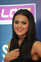 Actress Shraddha Srinath Stills in Black Short Dress at SIIMA Short Film Awards 2017 .COM 0087.JPG