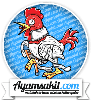 ayam sakit, dan cerita bodohnya