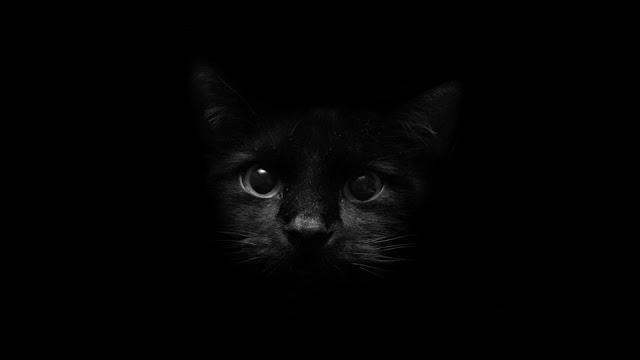 Black Dark Wallpaper - Wallpaper HD Wide