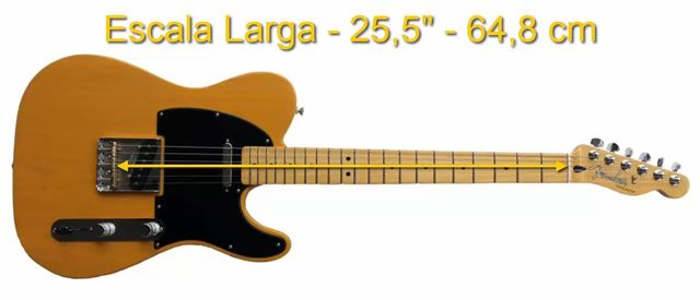 Longitud de la Escala Larga de la Guitarra Eléctrica