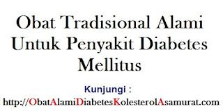 Obat Tradisional Alami Untuk Penyakit Diabetes Mellitus