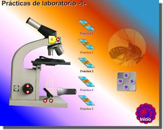 http://www.genmagic.net/fisica/pl1.html