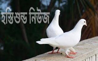 কবুতরের হাটে জমজমাট হস্তিশুন্ড ইদগাহ মার্কেট