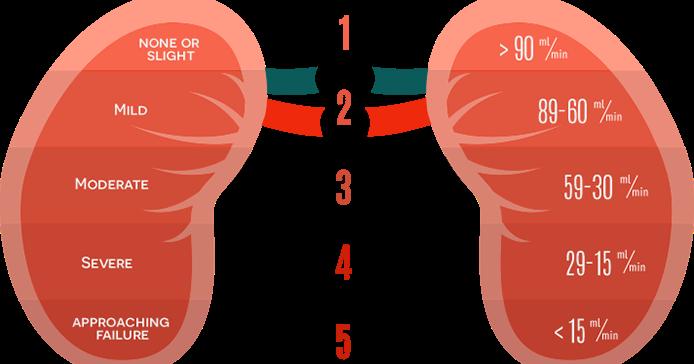 Introduction à l'hémodiafiltration
