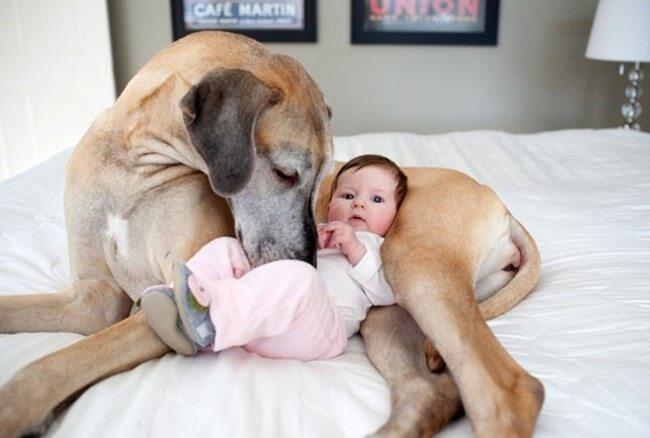 Fotos engraçadas de pais e filhos