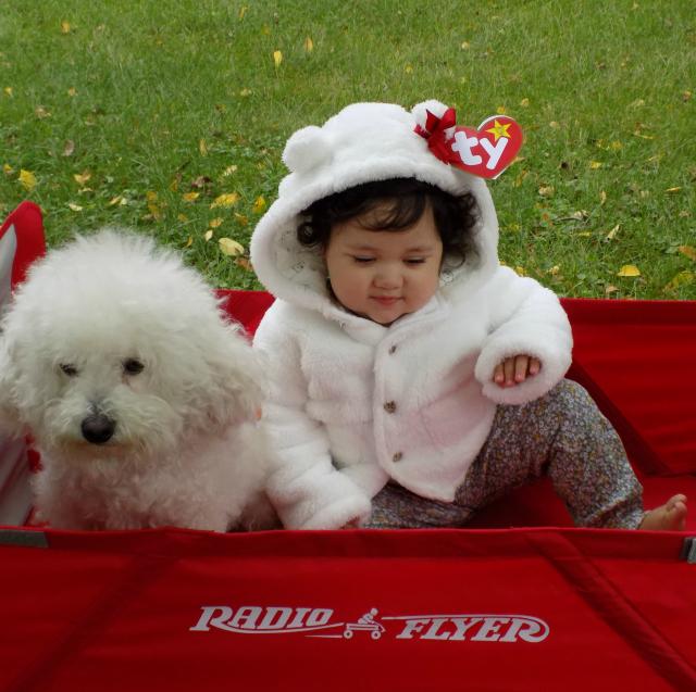 One Savvy Mom  | NYC Area Mom Blog: DIY Beanie Baby ...