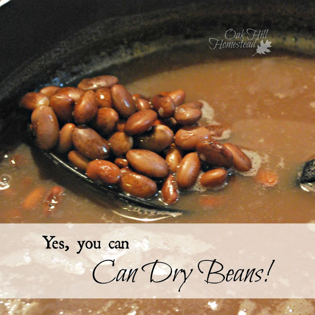 Yes, you can can dry beans!