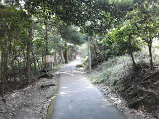 Berwisata Ke Big Budha, Po Lin Monastery Dan Wisdom Path Hong Kong