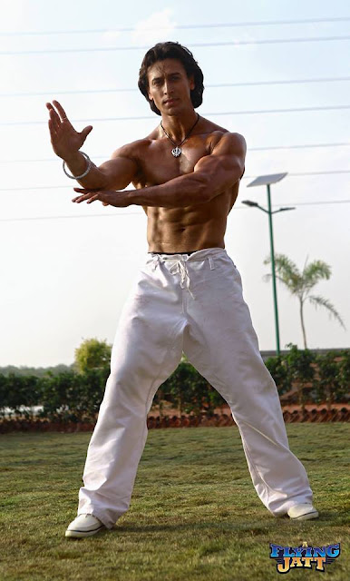 Tiger Shroff Age, Height, Girlfriend, Wife, Biography -3576