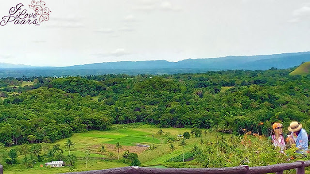The Beauty of Bohol