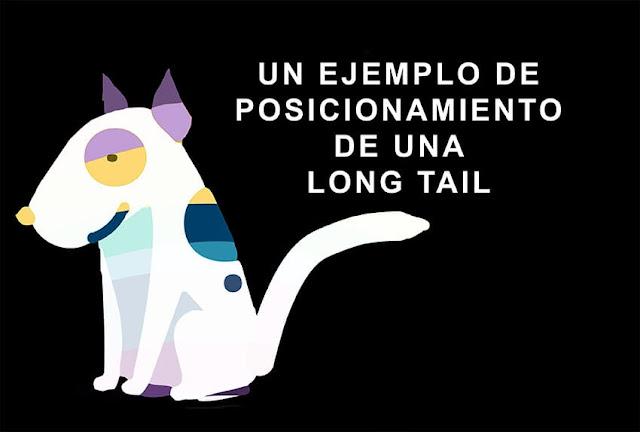 portada-de-ejemplo-de-posicionamiento-de-long-tail-con-perro-arcoiris