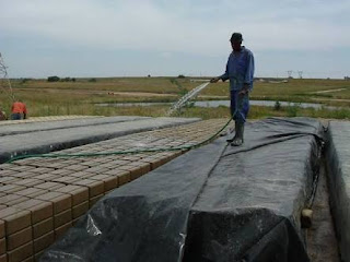 Use of water to cure sandcrete Blocls