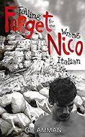 Forget Nico by Gaia B. Amman