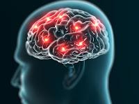 Lo que sucede en tu cerebro cuando estás inconsciente