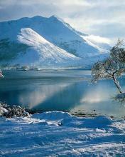 Snijeg, zima download besplatne pozadine slike za mobitele