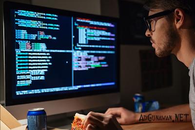 jenis profesi pembuat program aplikasi dalam bisnis online