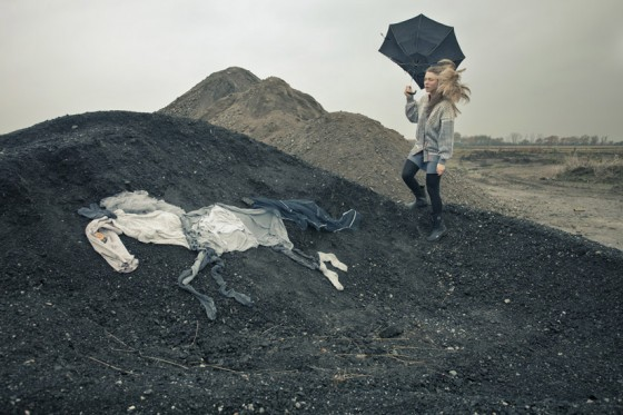 Cavalos de Ulrika Kestere