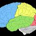 Test Otak Sederhana, Sedetail Apa Otak Kamu Mampu Mengingat