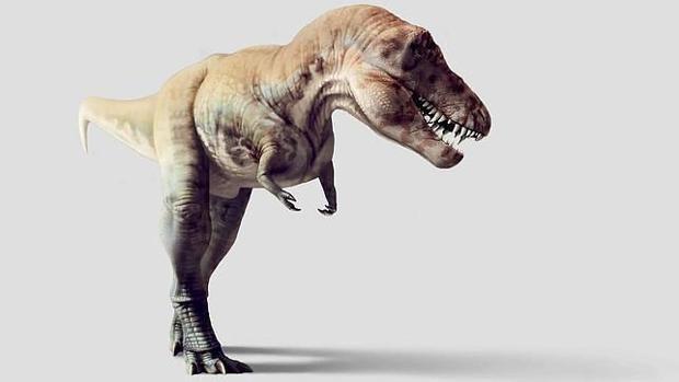 Proponen una teoría sobre los dinosaurios que puede cambiar todos ...
