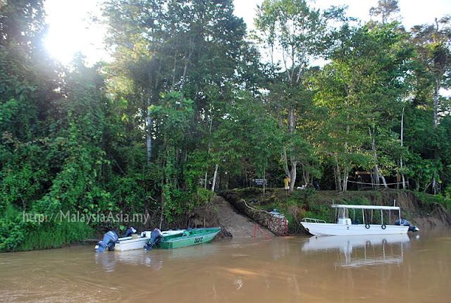 Kinabatangan Conservation Danau Girang