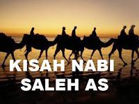 Riwayat Sejarah Kisah Nabi Saleh AS
