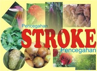 Tumbuhan Obat Pencegah Stroke