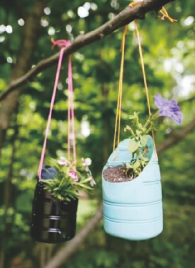 Pot Bunga Gantung Dari Tali Informasi Seputar Tanaman Hias