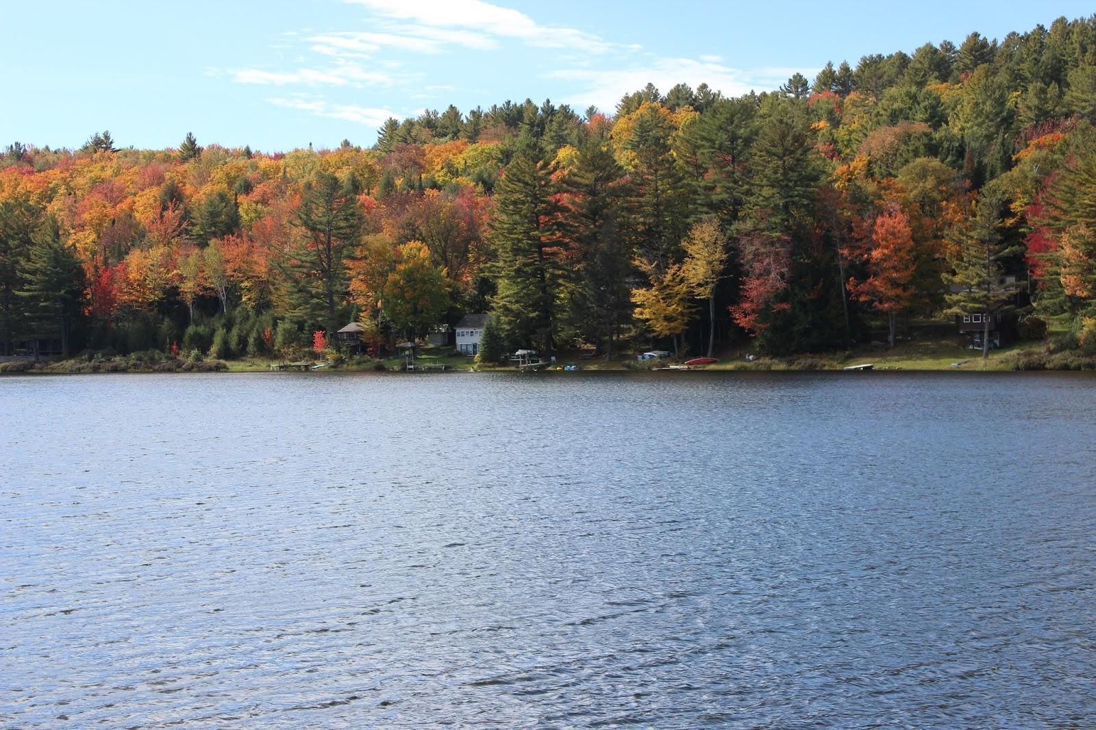 The Neapolitan, Vermont, Fall,