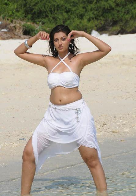 Hamsa Nandini actress navel show