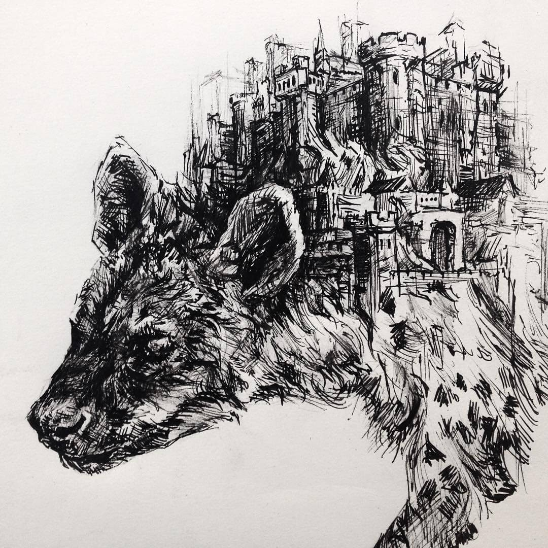 04-Hyena-sketch-in-pen-Matthew-McHugh-Animal-Drawings-and-Surreal-Interpretations-www-designstack-co