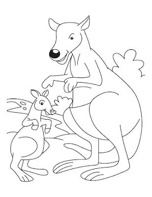Gambar mewarnai kanguru - 2