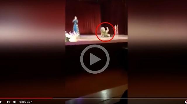 Dancer Ini Tewas di Atas Panggung, Penonton Malah Tepuk Tangan