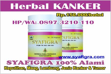 herbal alami kanker payudara stadium 3 perlu tahu lewat ...