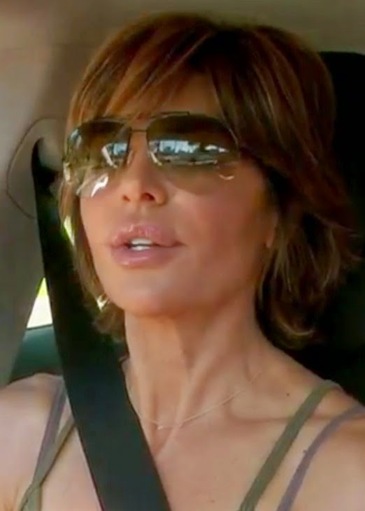 Lisa Rinna in the Stella & Dot On the Mark Necklace