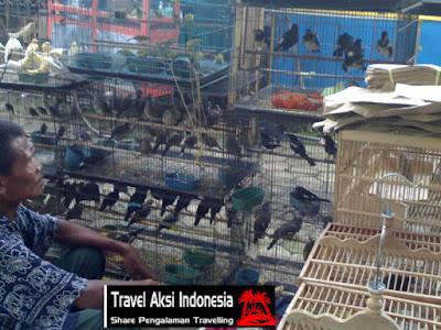 Lihat-Lihat Burung Di Pasar Hewan Purbalingga