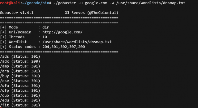 GoBuster – Directory/File & DNS Busting Tool in Go