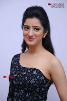 Telugu Actress Richa Panai Stills in One Shoulder Floral Long Dress at Rakshaka Bhatudu Movie Interview  0105.JPG