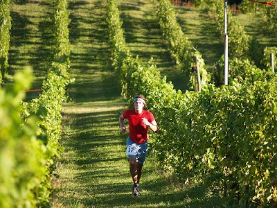 Enjoy the 10th Annual Harvest Stompede Vineyard Weekend on Michigan's Leelanau Peninsula