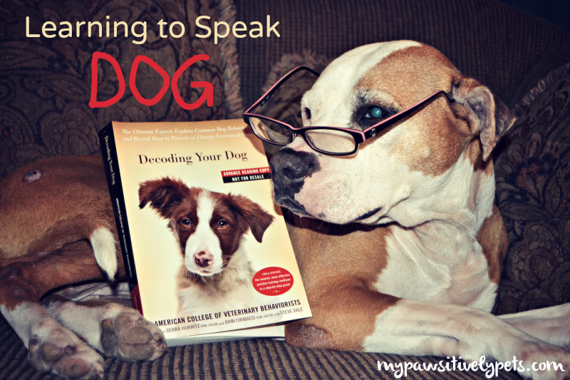 Learning to Speak Dog #DogDecoding