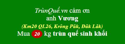 Trùn quế huyện Krông Păk, Đăk Lăk