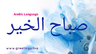 Light blues white flowers back Ground Morning greetings  in Arabic Language