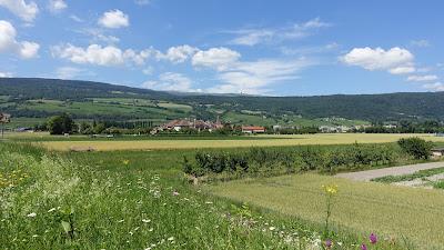 Altstadt von Le Landeron mit Jura im Hintergrund