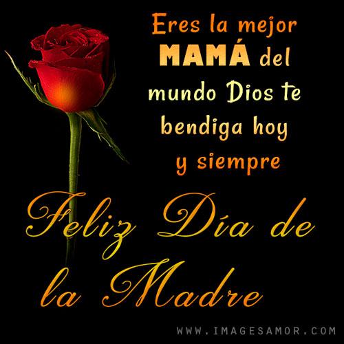 Imágenes bonitas de rosas con frases de feliz día de la madre