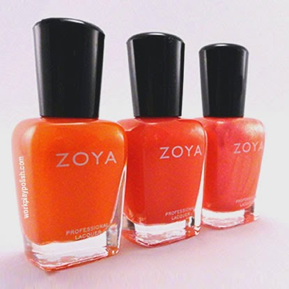 Zoya Blogger Collection