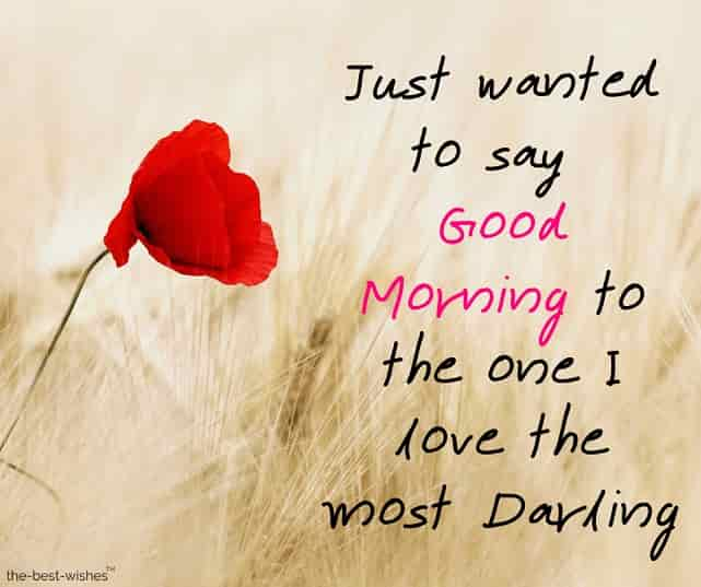 good morning messages to your darling