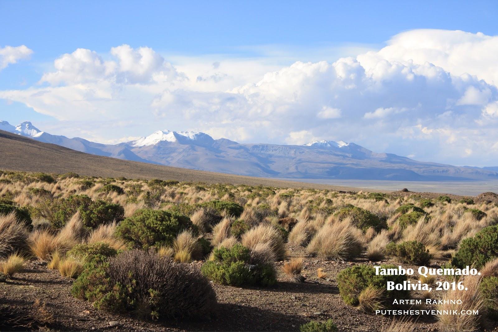Горы и степи Боливии